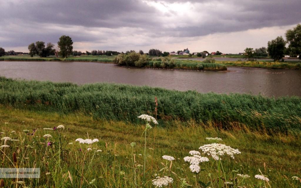 Fietsen op de Lekdijk-Oost