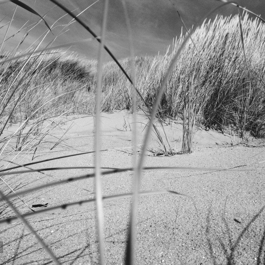 Strand en duinen bij Ouddorp