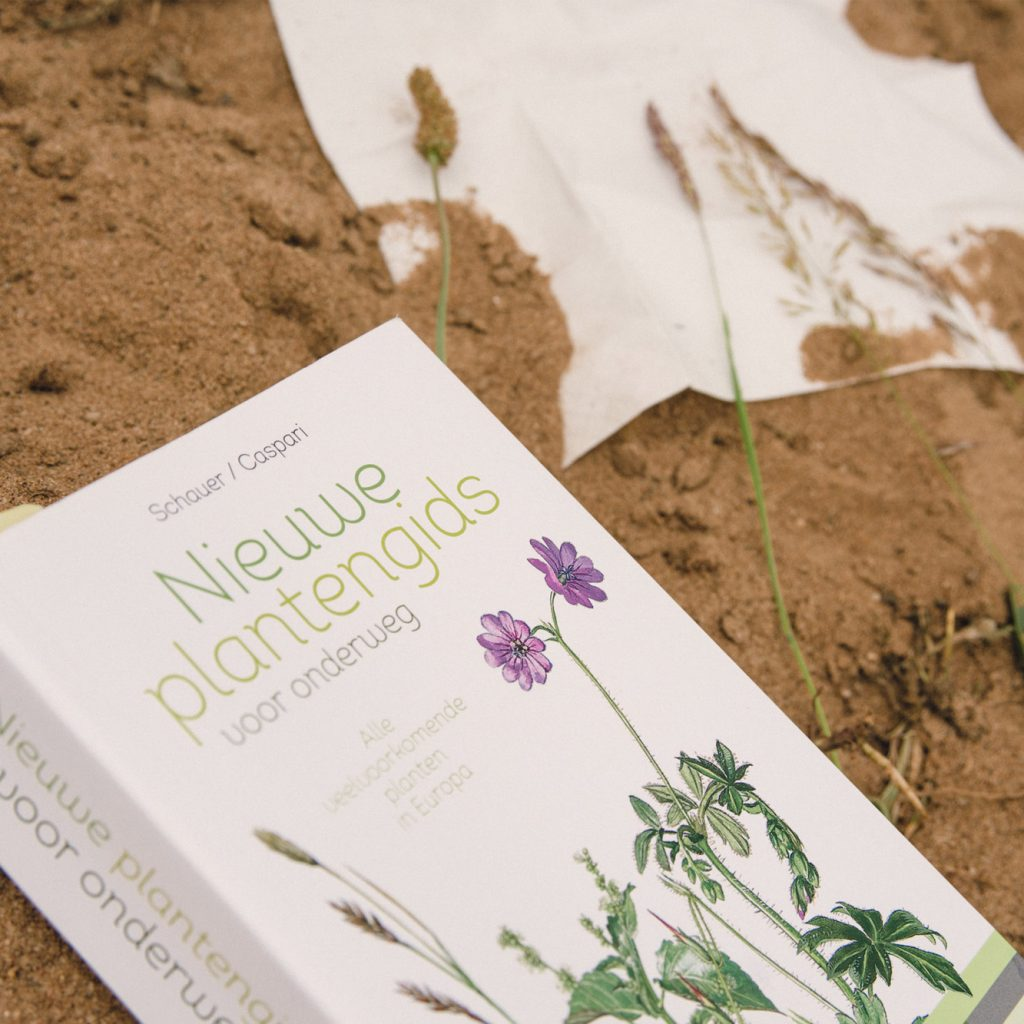 Determineren met de 'Nieuwe plantengids'