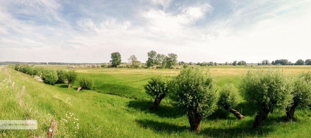 Stroomgebied van de Nederrijn bij Amerongen, gezien vanaf de Lekdijk.